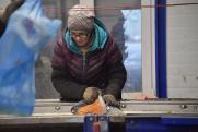 Почему климат в России теплеет в два раза быстрее, чем в других странах, и что с этим делать