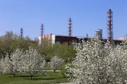 В зеленой десятке: Forbes оценил экологические достижения «Русала»