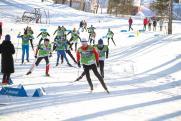 Лидеры биатлонной сборной России выступят на чемпионате в Югре