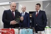 Как федеральные чиновники сибирских губернаторов проверяли: министерский десант