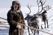 Как новое китайское предприятие убьет экологию Якутии