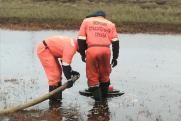 Разливы нефтепродуктов в центре Сургута: версии