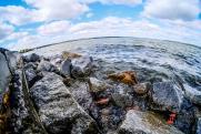 Пять лучших водоемов для рыбалки в окрестностях Екатеринбурга: начало сезона
