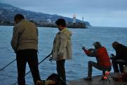 В России вступают в силу новые правила рыбалки: список
