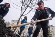 Мэр Екатеринбурга высадил яблони на акции «Сад памяти»