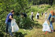 Экоактивисты «Роснефти» вывезли семь тонн мусора с берегов Волги
