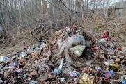 Жителям Кубани компенсируют проживание рядом с мусорным полигоном
