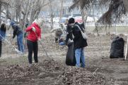 Мэр Челябинска Котова вывела чиновников на внеплановые субботники