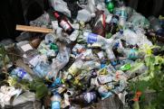 В Приморье ввели режим ЧС из-за мусорного коллапса