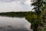 Москвичам перечислили места для купания