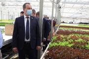 Председатель кубанского парламента оценил развитие Динского района