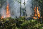 В Иркутской области горит свыше 32 тысяч гектаров тайги