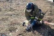 Тюменцы получили 676 протоколов за нарушение противопожарного режима