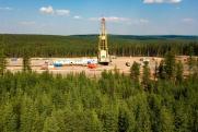 «Роснефть» работает над минимизацией воздействия на окружающую среду