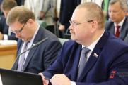 Губернатора Пензенской области выберут досрочно