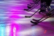 Мишустин предложил выпускать в Ульяновске хоккейные клюшки