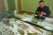 РПЦ рассмотрит результаты экспертиз «екатеринбургских останков»
