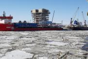 Росприроднадзор: нефтяники подвергают угрозе экосистему Арктики