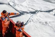 Российские ученые отправились изучать арктического «морского единорога»