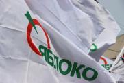 «Яблоко» выдвинет в Госдуму экс-директора екатеринбургского ДИВСа