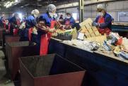 Пахнущая проблема: жители Москвы устали от завода младшего Чайки