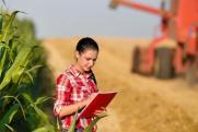 «Цены будут расти». В Госдуме оценили угрозу засухи