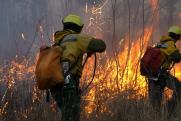 В Иркутской области потушили меньше половины природных пожаров