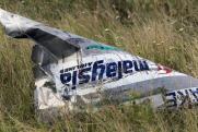 Появились подробности о пропавших без вести пассажирах упавшего MH17
