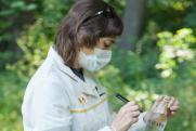 Популярные родники Саратова проверили на содержание вредных веществ