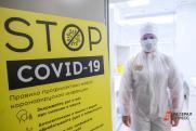 Эксперт о последствиях коронавируса: «Больше всего страдают сердце и нервы»