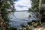 «Роснефть» поучаствовала в экологической акции на Соленом озере