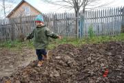 Эксперт о реализации «арктического гектара» на Ямале: «Подходит лишь малая часть земель»
