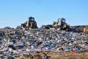 Названы самые грязные районы Петербурга: почему город не может избавиться от свалок