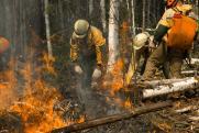 Формируя смыслы в СФО: серый дым лесных пожаров и красный зам полпреда