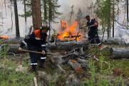 Пепел от лесных пожаров попал в воды Байкала
