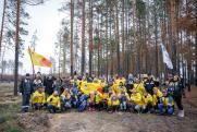Когда деревья станут большими: «РН-Уватнефтегаз» принял участие в акции «Сохраним лес»