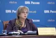 ЦИК не зафиксировал на Южном Урале вбросов