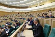 Совфед сделал заявление по поводу вмешательства Apple и Google в российские выборы