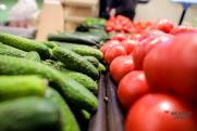 Россиянам объяснили, чем опасен салат из помидоров и огурцов