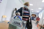 Эксперт считает, что доклад о мифах про выборы защитит российскую демократию