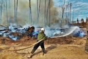Горячие точки на экологической карте ПФО в августе: лесные пожары охватили семь регионов