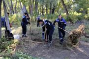 Сотрудники ММСК вывезли 16 тонн мусора из городского парка