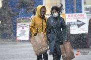Жителей Пермского края предупредили о заморозках и мокром снеге в выходные