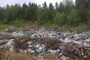 Как Архангельская область стала заложником мусорной реформы