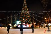 Петербург украсят новогодними елями почти на 100 млн рублей