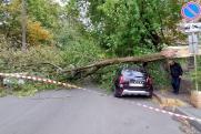 Ураган «Кийан» второй день разрушает Петербург