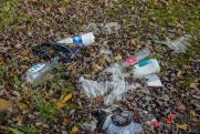 Экологи уверены, что проблему с нелегальными свалками в Омске через суд не решить