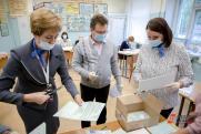 Эксперты прогнозируют повышенную явку на выборах из-за новых форматов голосования
