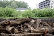 Экоконфликты Урала: протесты, зеленая река и «черные лесорубы»