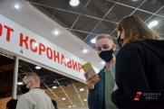 Формируя смыслы: QR-коды в СЗФО и проверка парламента в Петербурге